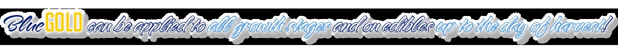 vineyard vines, vineyard, vineyard vine, grape vine fertilizer, best grapevine fertilizer, trumpet vine fertilizer, wisteria vine fertilizer, clematis vine fertilizer, vine fertilizer, passion vine fertilizer, grape vine fertilizer schedule, fertilizer for grape vine, best grape fertilizer, grape fertilizer, grape plant fertilizer, wine grape fertilizer, grape fertilizer ratio, muscadine grape fertilizer, grape fertilizer recommendations, concord grape fertilizer, grape fertilizer application, fertilizing wine grapes, liquid fertilizer for grapes, best organic fertilizer for grapes, organic fertilizer for vineyards, 10-10-10 fertilizer for grape vines, grapes fertilizer management